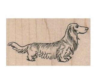 Rubber stamp Wiener Dog Dachshund, Dachshunds, Dogs LongHaired Dachshund pet scrapbooking supplies number 15802