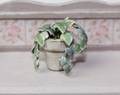 Dolls House Miniature Ivy in Grey Plant Pot