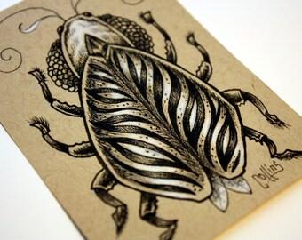 Beetle original ACEO ink drawing by Bryan Collins