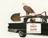 Birds for a better America.  Limited edition print of an original collage by Vivienne Strauss.
