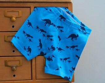 Jurassic Dinosaurs Dino print children's boxer briefs - custom size, made to order (with or without stripes)