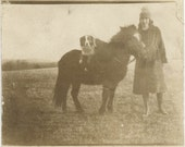 vintage photo 1921 Young Lady Shetland Pony Collie Dog lies over Horse