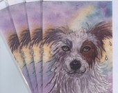 4 x Border Collie dog greeting cards sheepdog red and white brown injured innocence muddy puddle red merle chocolate sable Susan Alison Art