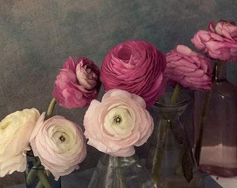 Ranunculus Print, Still Life Photography, Floral Art Print, Flower Wall Decor, Pink Brown Home Decor