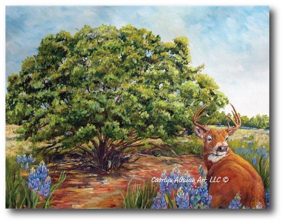 Art Print - Texas Hill Country Deer.....canvas art print
