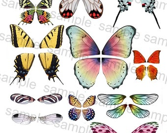 Digital Download OOAK Fairy Dolffie Butterfly and Dragonfly Wing sheets for Dolls or Scrapbooking