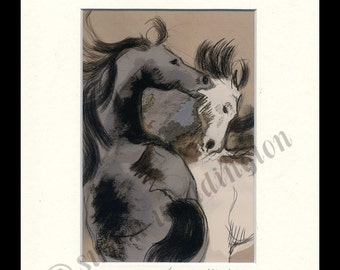 matted 5x7 horse print