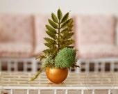 1:6 Scale Miniature Gold Potted Plant Fern Moss Arrangement Blythe Momoko Pullip Barbie Fashion Royalty Doll House