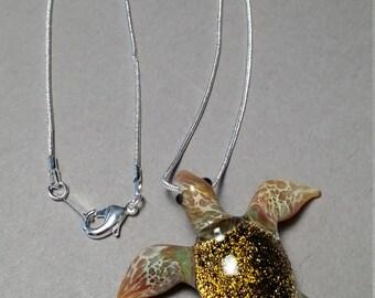 Gold Coast Sea Turtle