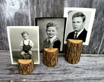 Willow Photo Stand Trio Rustic Picture Holders by The Bent Tree Gallery