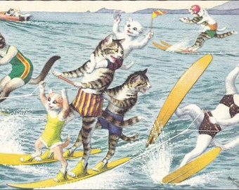 Mainzer cats postcard Water SkiingMainzer dressed cats postcard No. 4972 vintage postcard, SharonFosterVintage