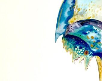 "Watercolor Painting, Horseshoe Crab, Original Art, Sea Creatures, 9""x12"""