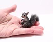 OOAK Realistic Miniature Eastern Gray Squirrel - by Malga