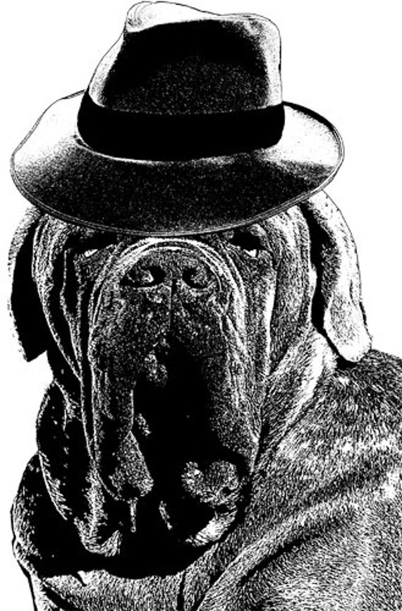 old mastiff dog hat digital Download art printable illustration clipart png jpg Digital graphics Image digital stamp animals black and white