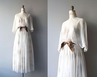 Morningstar dress | vintage 1970s dress | formal chiffon 70s maxi dress