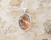 Real Butterfly Wing Necklace Jewelry Leopard Lacewing