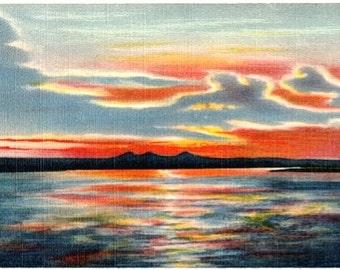Vintage New Mexico Postcard - Sunset on the Rio Grande (Unused)