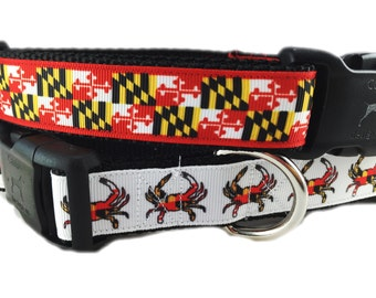 SALE, Dog Collar, Maryland Pack, 1 inch wide, adjustable, quick release, metal buckle, chain, martingale, hybrid, heavy nylon
