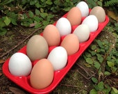 Egg crate, egg holder, egg carton, bright, opaque, ruby red, urban farmer, back yard chickens, bake, cook