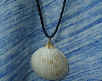 Glittery Shell Pendant on a Soft Black Cord Necklace