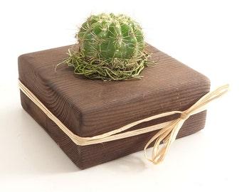Organic Natural Rustic DARK Wood Gift, Guest Favors - Succulent, Cactus, Haworthia, Air Plant, Mix - Wedding, Bridal, Baby Shower, Event