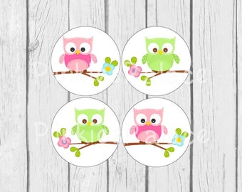 Owl Stickers Pink Green Owls on Branch 1.5 Inch Round Set of 24 Stickers Ses314