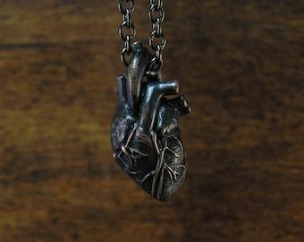Anatomical Human Heart in Dark Noir, Solid Bronze, Anatomic Human Heart Pendant, dangles on a 20 inch chain