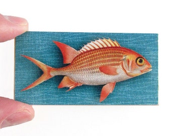 Red Snapper Fish Magnet - Fishing Magnet  - Nautical theme decor - Groomsmen Gifts