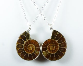 TWO Best Friend Necklaces with Matching Coffee, Toffee, Caramel, and Cream Genuine Ammonite Fossil Pendants, Sterling Silver Chains