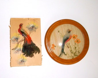 Small Vintage Bird Feather Paintings • 2 count