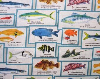 Catalina Island Cream Fish Block Elizabeth Studio Fabric Yard