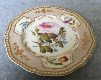RARE Spode Felspar Handpainted Botanical Cabinet Plate