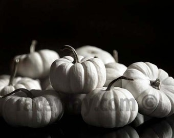 White Pumpkins, Black and White Art Print, Rustic Pumpkin Decor, Fall Wall Art