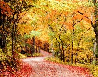 Autumn Leaves Photo, Autumn Photography, Autumn Landscape Photo, Winding Road, Fall Landscape Photo Fall Foliage Autumn Scenery Country Road