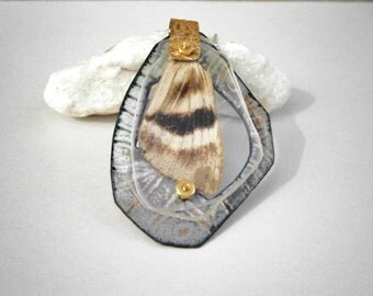 Enameled Hawk Moth Wing Specimen Pendant