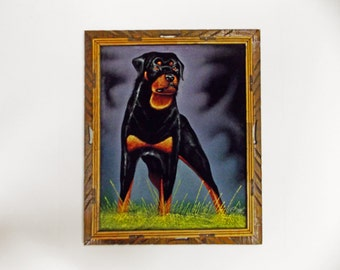 Vintage Dog Painting on Black Velvet--- Rottweiler Painting by Ortiz--- Large Painting in Rustic Mexican Frame