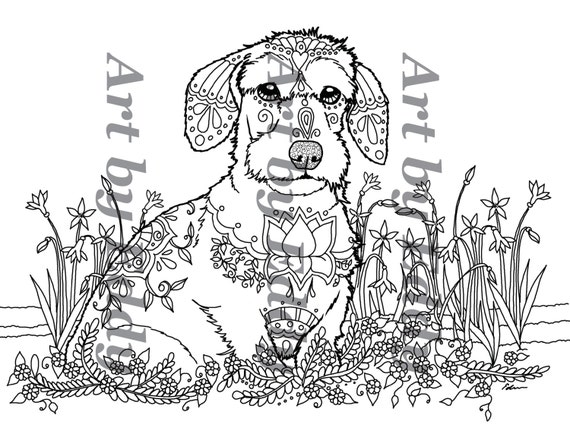 items similar to art of dachshund single coloring page on etsy