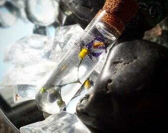 Bottled Nightshade Pendant