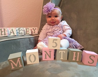 Baby Blocks- Photo Prop for Monthly Baby Pictures- Set of 16 Blocks- Multicolor Pinks, Grays