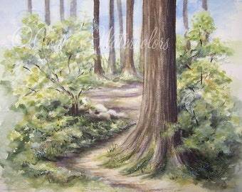 Original Watercolor Landscape Painting Nature Trail Hike Art Landscape Forest Evergreens Northwest Hiking