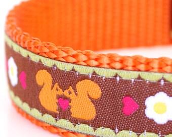 Orange Squirrels Dog Collar, Adjustable Ribbon Pet Collar, Woodland