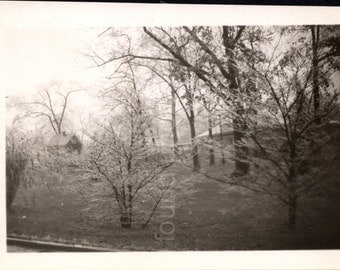 Vintage Photo, Luray Virginia in Winter, Black & White Photo, Snapshot, Found Photo, Old Photo, Trees, Cabin, Landscape