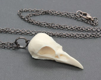 bird skull necklace - mini magpie - bone white on gunmetal