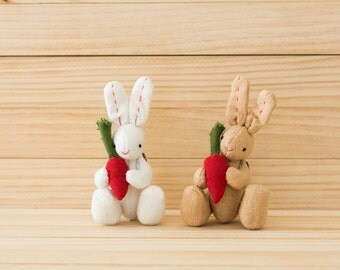 Couple Bunny and Carrot (Brown and White)