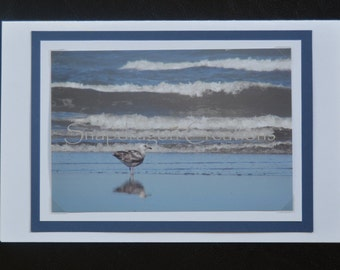 Photo Greeting Card, Seagull and Waves on Beach, Blank Inside