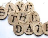 Save the Date banner - photo prop - wood tree branch slice and jute twine