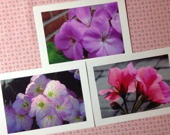 Photo Notecards,Flower Photo Notecards, ,blank inside notecards, flower notecards