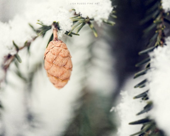 Winter Print or Canvas Art, Woodland Snow Picture, Pinecone, Green, White, Brown, Snow Picture, Snowflakes, Evergreen Winter Print.