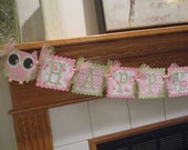 Open Eyed Owl Banner, Owl Happy Birthday Banner, Pink Green Owl Banner, Matching Tissue Pom Poms Available
