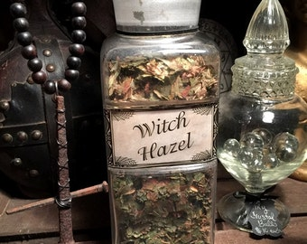 19th Century Apothecary Witch Hazel Bottle filled with Witch Hazel Leaves at Gothic Rose Antiques